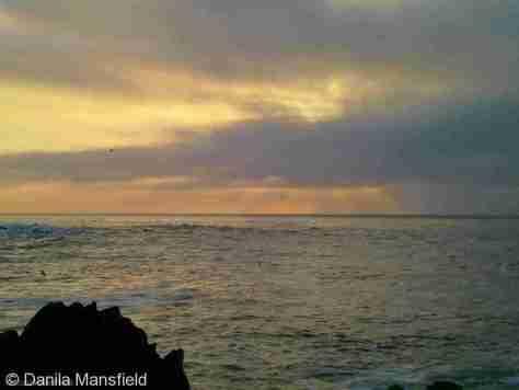 Monterey & Big Sur (18)