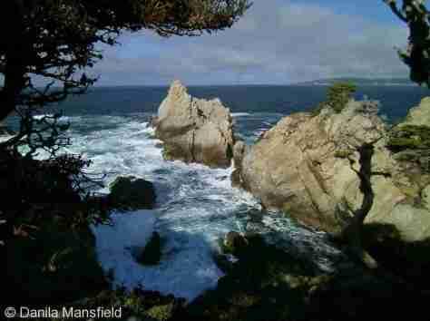 Monterey & Big Sur (2)