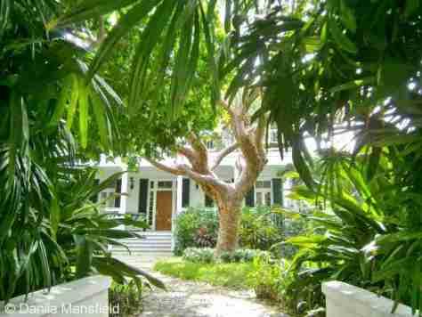 Key West (50)