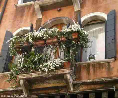 Venice (76)