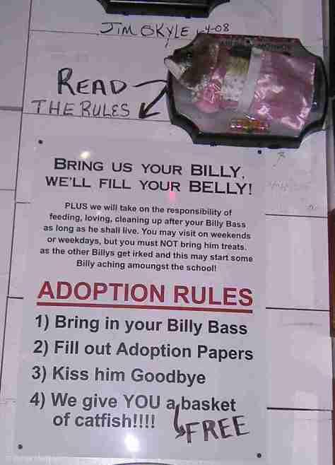 Billy Bass (16)