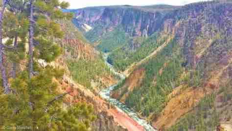 Canyon (91)