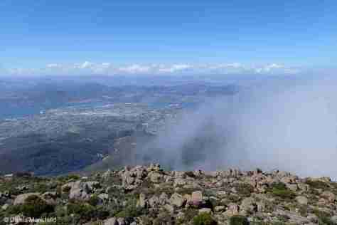 STUNNING MOUNT WELLINGTON VIEWS