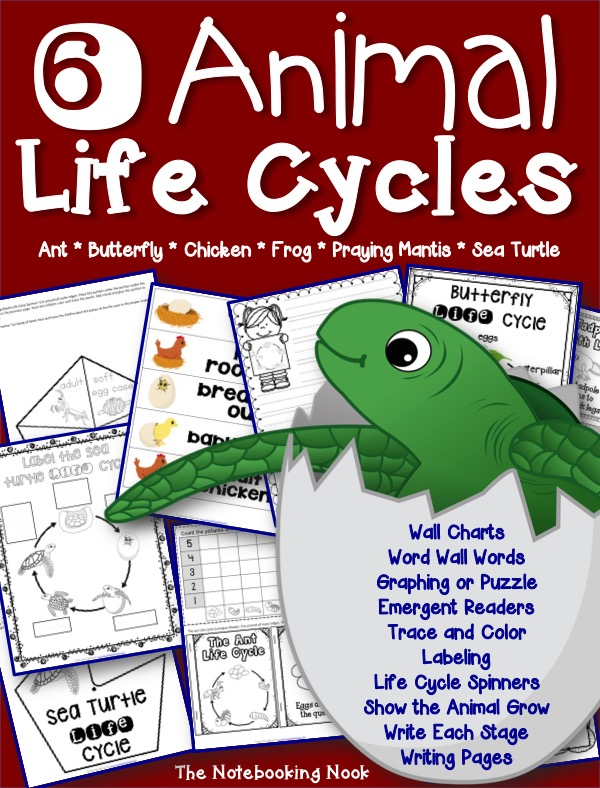 6 Animal Life Cycles Bundle from Notebooking Nook