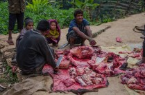 Büffel-Schlachtfest in Ward 1