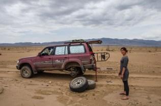 Wüstengewächs vs. Reifen: 1:0