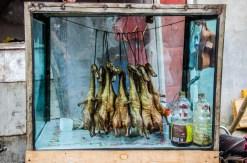 Beijing Ducks on vacation in Yunnan