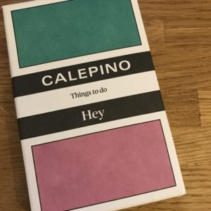 calepino limited edition notebook bright colours