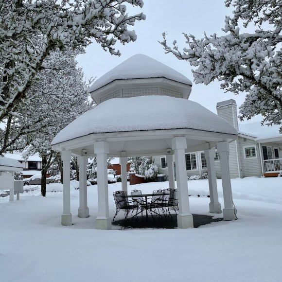 deep snow on gazebo, lawn, and trees