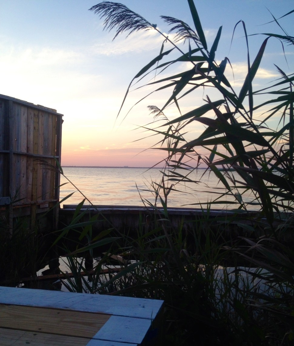 The Great South Bay from Cherry Grove, Fire Island. Photo by Rick Stachura. August 19, 2014.