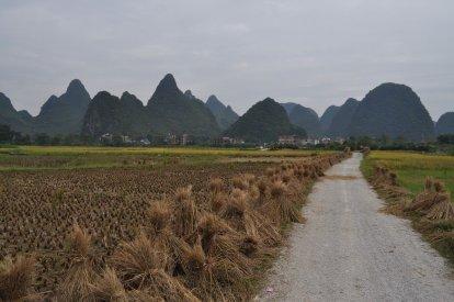 Yangshuo Cycling