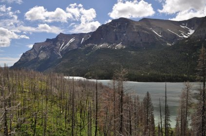 Glacier National Park 26