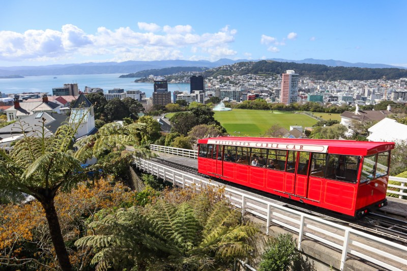 Things to do in Wellington Guide