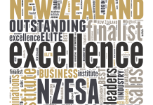 New Zealand Excellence Awards