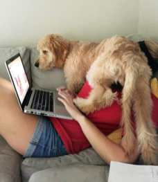 covid-19-work-from-home1