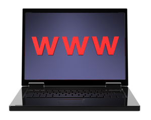 Managing Your Online Web Presence