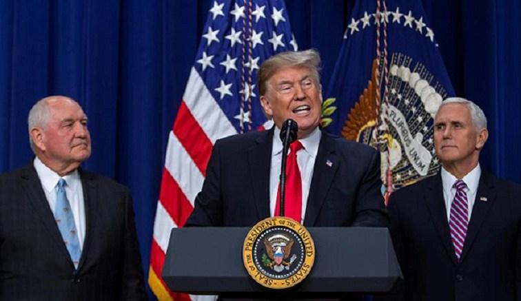 trump-Donald
