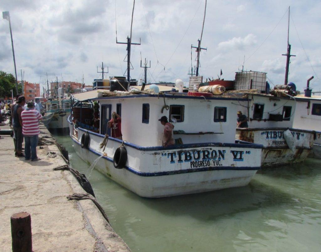 Incerditumbre en el sector pesquero yucateco por COVID-19