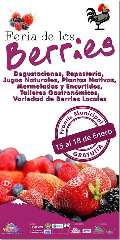 fiesta berries