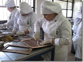 Liceo Politecnico de Villarica - Chocolate1