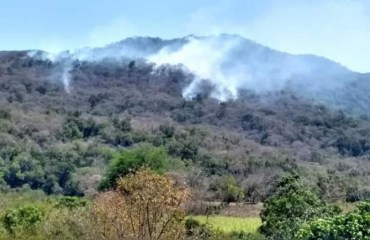 """Arde zona de reserva ecológica """"El Cielo"""" en Gómez Farías, Tamaulipas"""
