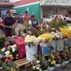Se disparó un 50% el precio de la flor