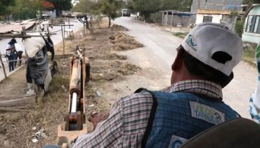 Unidos por Tamaulipas recupera más de 700 kilómetros cuadrados de camellones y áreas verdes.