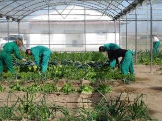 Políticas Agrarias saca a licitación el contrato para el desarrollo de sensibilización sobre las ventajas del movimiento cooperativo