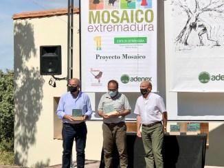 La Junta de Extremadura recibe el reconocimiento de los premios Adenex 2019 – 2020 por el Proyecto Mosaico