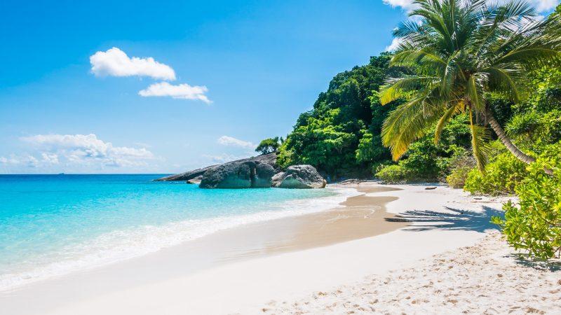 Libertad en la playa