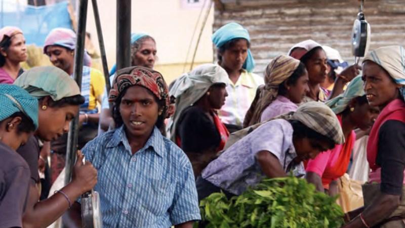 Destrucción de empleo y desigualdad