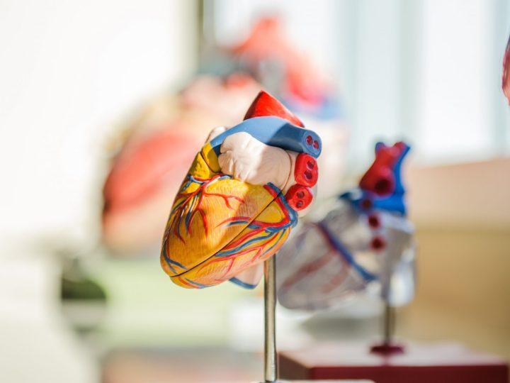 El trabajo: Una trampa para el corazón