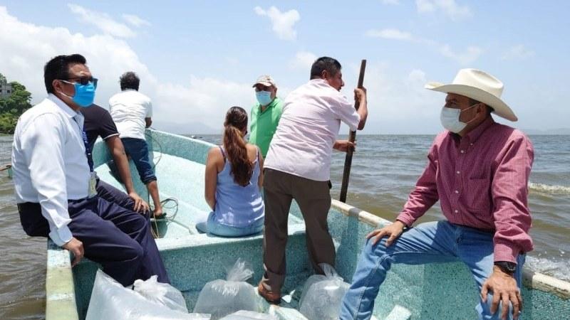 Alcalde electo Juan Rosario y líderes pesqueros siembran alevines en lago de Catemaco