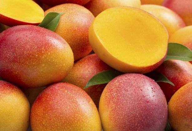 bg-mango-01-1024x682