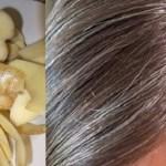 Escureça cabelo branco naturalmente com apenas 2 ingredientes