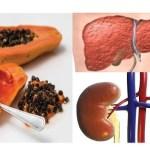 Como desintoxicar seu fígado e rins? Aqui está a receita com sementes de mamão
