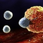 Não querem que você saiba – as 10 maiores causas de câncer que você usa todos os dias!