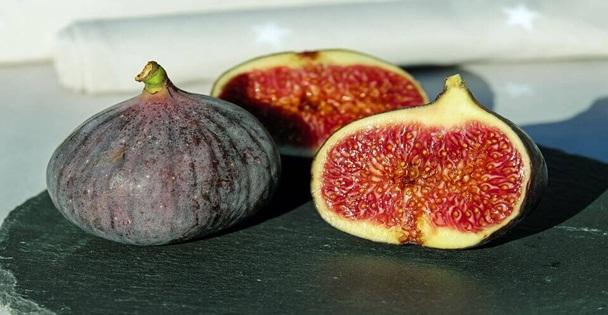 Folhas de figueira: Diga adeus a Diabetes e reduza triglicerídeos ... Os resultados são surpreendentes!