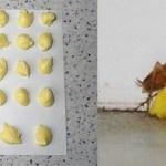 Como se livrar das baratas para sempre