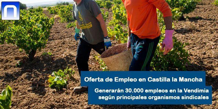 vendimia en Castilla la Mancha