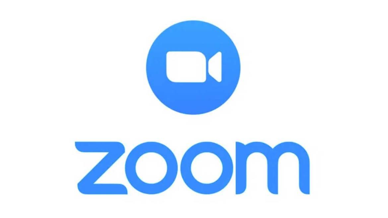 empleo zoom