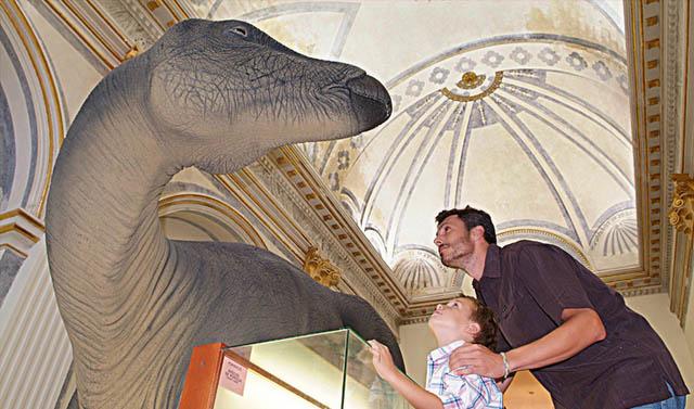 16 Museos Donde Ver Fósiles De Dinosaurios En España La Espiga Digital