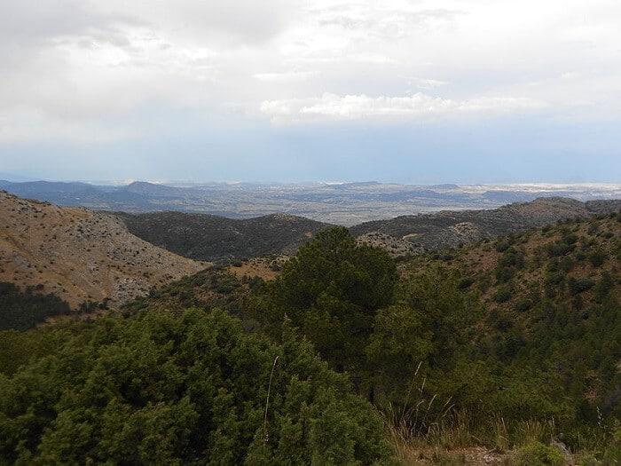 Ruta Guiada para conocer la Umbría de Sierra Espuña