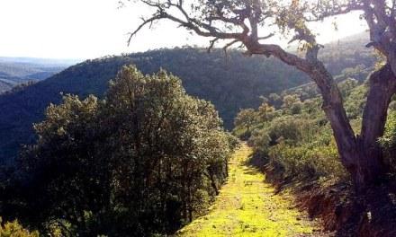 Mal noviembre para el turismo rural en Cabañeros