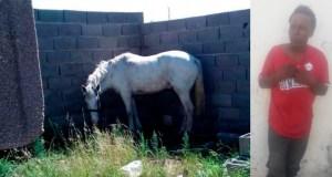 robo-caballo-villa-riva
