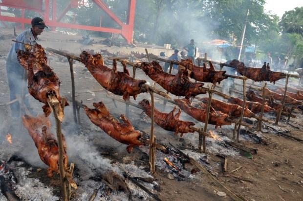 ministro-de-agricultura-garantiza-carne-de-cerdo-para-navidad