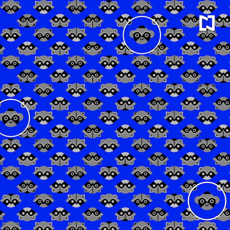 Reto visual: Hay tres ladrones ocultos entre los mapaches