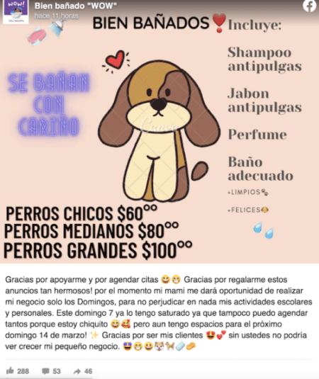 Jonathan Niño Baña Perritos Imagen