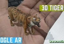 Tiger View in 3D Google