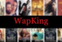 Wapking Website